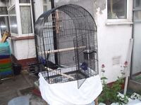 PARROT CAGE GOOD CON ONLY £30 CAN DELIVER