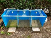 4ft breeder tank aquarium with pipings