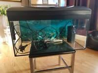Fish tank sold!!