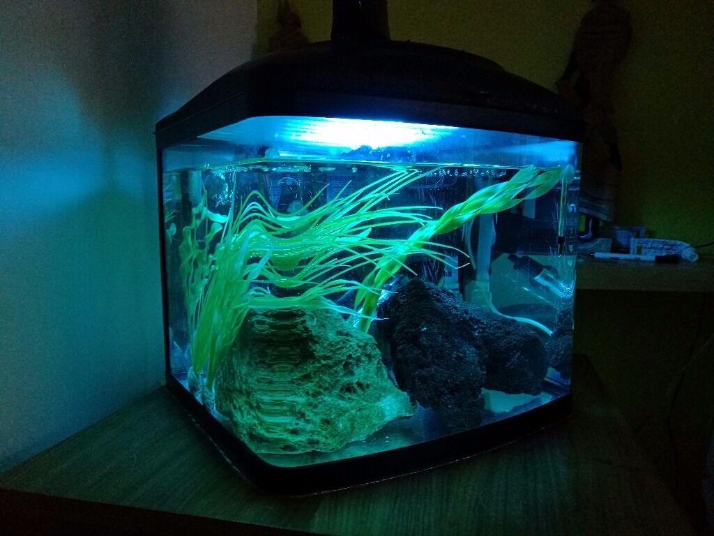 Aquarium fish tank for sale in london - Interpet 48l Fish Pod Aquarium Fish Tank