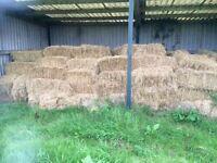 Hay bales small