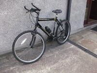 Townsend 'Endurance' Mens Mountain Bike