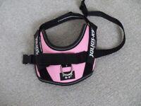 Julius -K9 Dog Harness