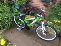 Carrera Blast Child's Bike