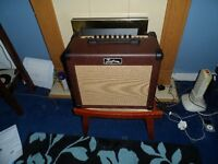 guitar acoustic amp