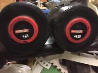 42kg Escape Dumbbells