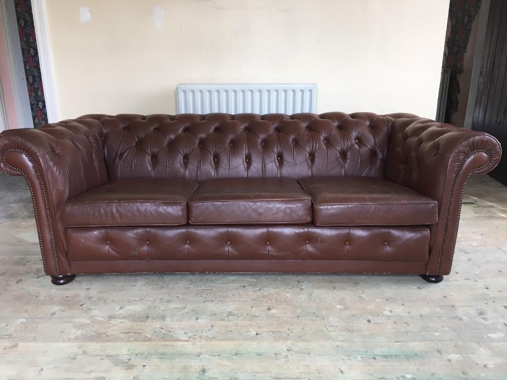 vintage pegasus brown leather chesterfield sofa in. Black Bedroom Furniture Sets. Home Design Ideas
