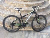 Large Youth Boardman mountain bike