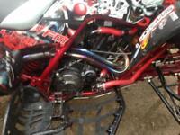 Raptor 660 road legal race tuned