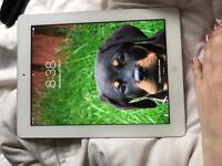 iPad (great condition)