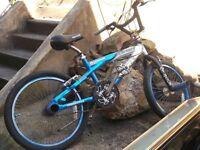 Bike with stunt pegs
