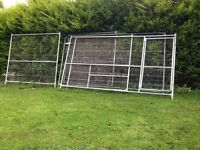 LARGE GALVANISED DOG RUN 11.5FT X 7FT HEIGHT --NOW SOLD--