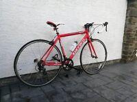 Carrera Zelos 51cm frame bicycle