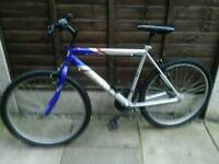 PROBIKE TRIDENT, MOUNTAIN BIKE, 26, ALLOY WHEELS,,