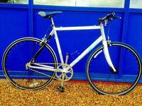 Condor Bivio Road bike...single speed Conversion Rare Frame