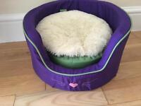 Purple Cat/Kitten Bed