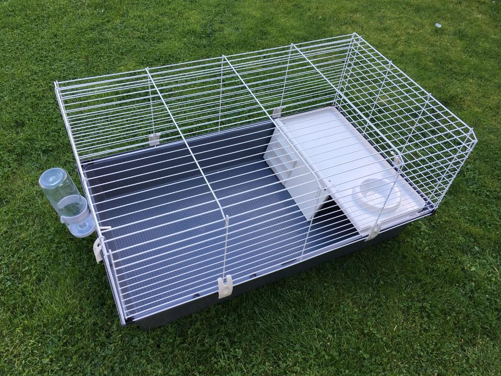 Guinea Pig Cage Large Only a Month Old