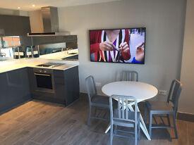 Luxury, fully refurbished 2 bed flat in Gun Wharf