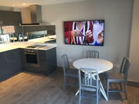 Luxury, fully refurbished 2 bed flat in Gun Wharf