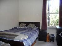 Large double room - East Dulwich garden flat, £650pcm