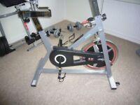 Body Sculpture Speed Bike