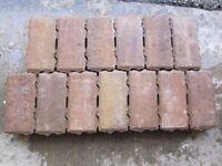 Interlocking Paving Blocks