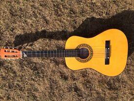 Aucustic Guitar..