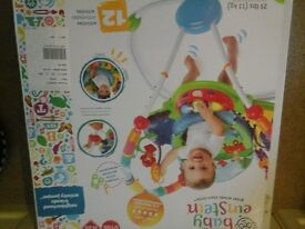 Baby Einstein activity sit in play