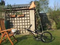 Childs 'UNIVERSAL' TAG A LONG / TRAILER BIKE