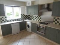 3 Bed Family House in Neasden. 2 Bath. 2 Reception. Just renovated. Must See.
