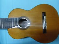 10-string Cathedral Guitar by Bartolex with hard case.
