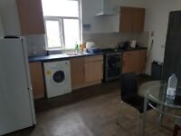 Single and twin room to let