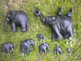 8 VERY OLD EBONY ELEPHANTS