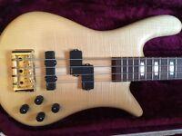 Spector Euro 4LX bass guitar