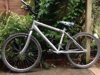 Townsend Boys Mountain Bike