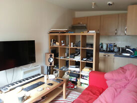 1 bed small flat