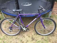 Mountain bike Diamondback Unisex Retro