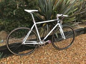 Custom Fixed Gear / Singlespeed Bike