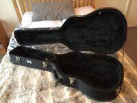 Acoustic Hard Case (Black Rat/auditorium/black tweed)