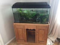 105l Fish tank with bespoke cabinet, heater, Fluval filter, air pump