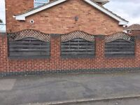 7 Arched top fencing panels with trellis tops 1800 x1200.