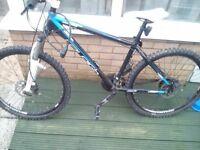 Used raleigh mountain bike