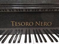 Tesoro Nero - Admin and PA Job Available