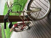 Womens Bike - Cruiser