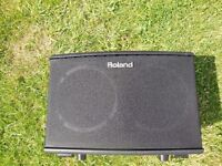 Amazing Roland AC40 Acoustic Guitar 40Watt amplifier incredibly compact weighing in at only 5.3Kg!!!