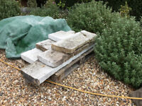 Coping stones. Yorkstone but painted. Various lengths. Some whole, some broken.