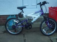 girls 20 inch bike (good used condition)