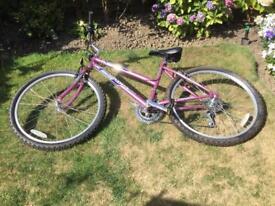Ladies 26 inch wheel mountain bike