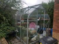 Free greenhouse 6'x8' reserved
