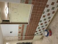 Hi I am a plaster and tiler no job is to big or small!